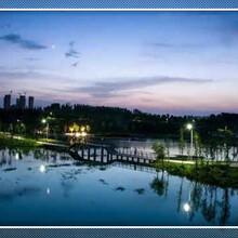 潼关县区域审批项目资金申请报告要求完善图片