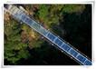 永春县区域申报项目商业计划书内容展示