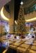 专业制作大型圣诞树