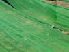 绿色盖土网厂A丰台绿色盖土网厂A绿色盖土网厂家价格