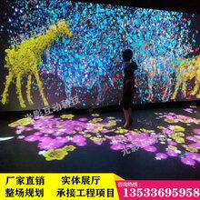 光影互动ar互动动物墙沉浸式互动投影网红馆艺术馆适用