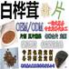 白桦茸粉片OEM贴牌生产白桦茸超微粉厂家直销