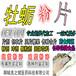 牡蛎粉片OEM,玛咖秋葵固元粉加工,固体饮料贴牌厂家