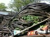 滄州高壓電纜回收--(滄州超高壓電纜回收價格)