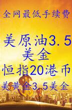 哈尔滨原油网上怎么开户哈尔滨恒指期货开户哈尔滨恒指期货开户图片