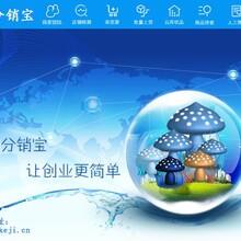 蓝淘分销宝专注精研,只为打造更好的店淘软件,厂家货源分销软件招加盟代理