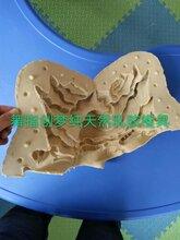 镇江市儿童石膏像模具批发,石膏像乳胶模具,diy石膏像模具图片