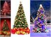 张家界日新月异的圣诞树厂家专业梦幻灯光节厂家出租出售