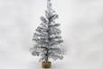 60cm圣诞树-70银色小树
