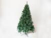 圣诞树-897