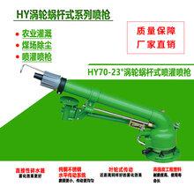 德龙DLW-50涡轮涡杆雾化灌溉喷枪农业灌溉、浇地、洒水厂家直销图片