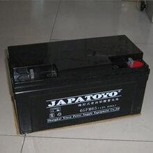 东洋蓄电池12V65AH正品包邮