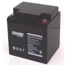 恒力蓄电池CB38-12恒力蓄电池12V38AH/enduring蓄电池质保三年