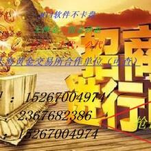 黄金FFX梦想之旅黄金代理图片