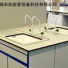 实验室专用PP水盆/PP黑色水杯,理化生实验室pp水槽/水盆