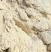 四川省內長期穩定供應廢紙紙漿黃紙漿