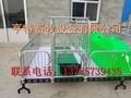 四川绵阳北川县镀锌管母猪双体产床加高母猪双体产床2.1米3.6米加高母猪产床图片