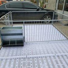 黑龙江齐齐哈尔龙沙区镀锌管仔猪保育床保育床价格