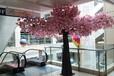 仿真植物厂家仿真樱花树批发市场玻璃钢假樱花树