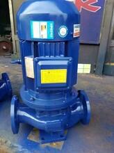 管道循环泵图片