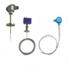 安徽菲勒电气有限公司-WRE-230D-多点热电偶-哪家强-加工厂家图片