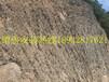 供应山东绞索网主动被动柔性边坡山体防护网拦石网