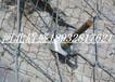 供應黑龍江絞索網主動被動柔性邊坡山體防護網