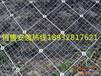 边坡防护网环形主动防护网柔性防护网厂家