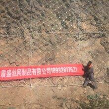 河北盾盛边坡防护网厂家SNS柔性边坡防护网,边坡防护网价格