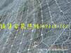 衡水供应优质绞索网防护网