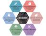 微盘选择平台?首选创业联盟,高收益新型合法项目
