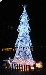 灯光节出售圣诞树出售全国制作厂家一条龙服务新生代灯光节展览