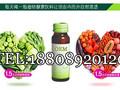 代加工果蔬植物口服饮品OEM贴牌图片