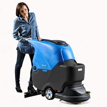 容恩R-X50B静音型手推式洗地机,洗地宽度50cm图片