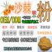 果蔬粉系列沙棘提取物沙棘粉优质天然沙棘果粉贴牌代加工