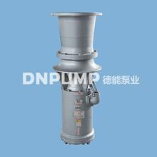 天津德能泵业厂家直销简易式轴流泵图片