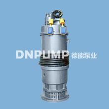德能550QHB大型潛水混流泵/海水抽取/高效耐腐蝕/工業排水圖片