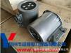 供应扬修电动执行器DZW机电一体化WK2功率控制器