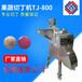 大量銷售九盈果蔬切丁機TJ-800鄭州果蔬切丁機商業專用果蔬切丁機