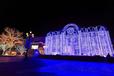 梦幻灯光节,灯光展。灯条、彩灯租赁:梦幻灯光节,灯光展。