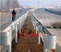 厂家直供六安高速防撞护栏波形护栏优质护栏板