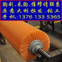 意大利进口磨毛机毛刷,磨毛棍,起毛机针布,刺皮等图片