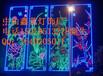 專業供應/春節造型燈畫/動物圖案燈飾/卡通造型燈牌