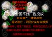上海文玩古董推广渠道_文玩古董专业推广渠道