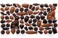 英国进口巧克力国内标签怎么制作