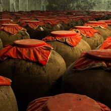 白酒生產企業散裝白酒瀘州鼎信基酒白酒生產廠家