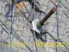 边坡防护网丨绞索网丨SPIDER蜘蛛网丨主动防护网