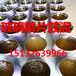 哈尔滨热销乙烯基玻璃鳞片涂料玻璃鳞片胶泥防腐