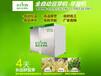 家庭豆芽机多少钱一台豆芽机迪生全自动豆芽机