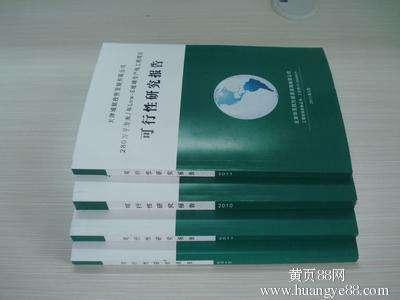 林州市项目可行性报告编写的公司